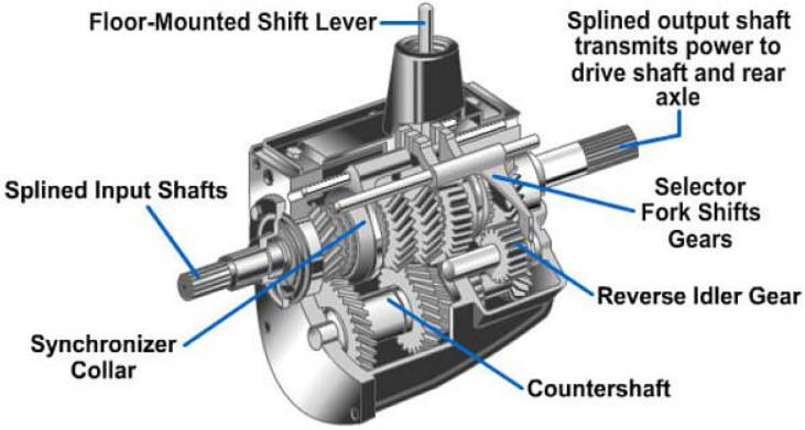Manual Transmission Showing Gears and Synchronizer
